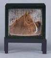 Fernseher auf Tisch drehbar und Dia